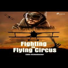 Fighting the Flying Circus